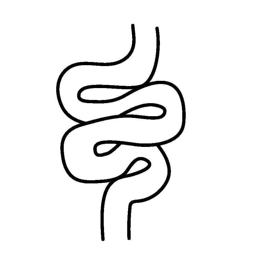 Darm Icon
